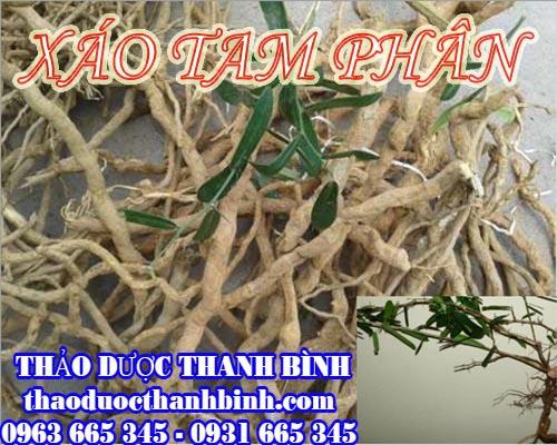 Địa chỉ mua bán xáo tam phân tại Bắc Ninh uy tín chất lượng
