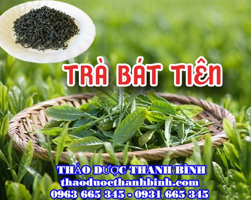 Mua bán trà Bát Tiên tại Hà Nội uy tín chất lượng tốt nhất