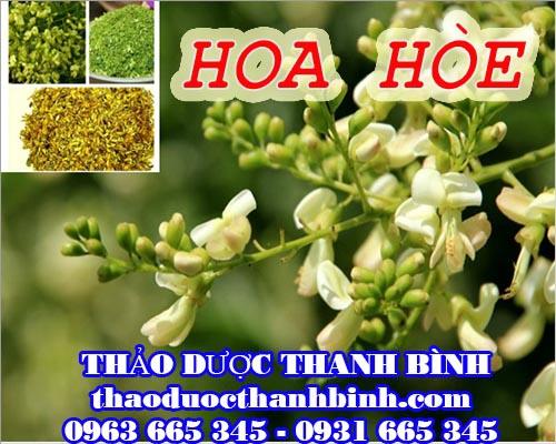 Mua hoa hòe ở đâu tại Bình Thuận an toàn hiệu quả ???