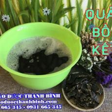 Cửa hàng bán trái bồ kết tại Hà Giang ngăn ngừa rụng tóc tốt nhất