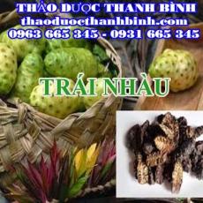 Cửa hàng bán trái nhàu khô tại Bình Thuận giúp lợi tiểu trị đau nhức xương khớp