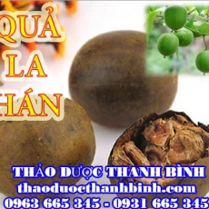Địa chỉ mua bán quả la hán tại Bình Thuận uy tín chất lượng