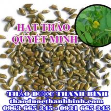 Địa chỉ mua bán hạt thảo quyết minh tại Hà Nội giá tốt nhất
