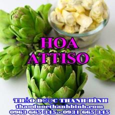Địa chỉ mua bán hoa atiso tại Bắc Kạn giá tốt nhất
