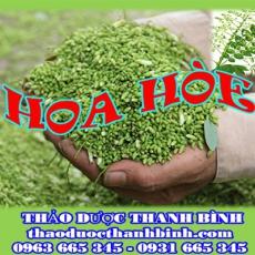 Địa chỉ mua bán hoa hòe tại Bình Thuận giá tốt nhất