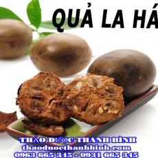 Địa chỉ mua bán quả la hán tại Bình Thuận giá tốt nhất