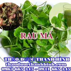 Địa chỉ mua bán rau má tại Hà Nội giá tốt nhất