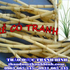 Địa chỉ mua bán rễ cỏ tranh tại Đắk Lắk giá tốt nhất
