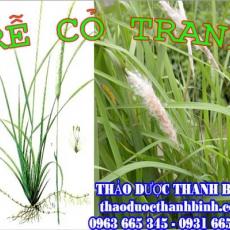 Địa chỉ mua bán rễ cỏ tranh tại Đắk Lắk uy tín chất lượng