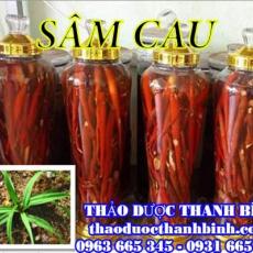 Địa chỉ mua bán sâm cau tại Điện Biên uy tín chất lượng