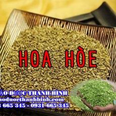 Địa điểm cung cấp hoa hòe tại Bình Thuận uy tín chất lượng