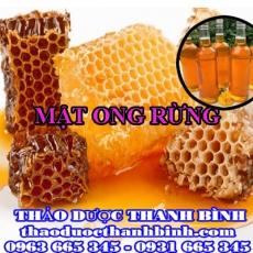 Địa điểm cung cấp mật ong rừng tại Cao Bằng uy tín chất lượng