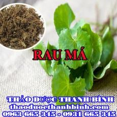 Địa điểm cung cấp rau má tại Hà Nội uy tín chất lượng