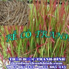 Địa điểm cung cấp rễ cỏ tranh tại Đắk Lắk uy tín chất lượng