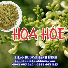 Mua bán hoa hòe tại Bình Thuận uy tín chất lượng nhất