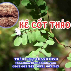 Mua bán kê cốt thảo tại huyện Từ Liêm giúp điều trị sỏi tiết niệu tốt nhất