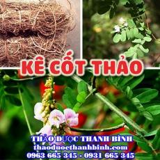 Mua bán kê cốt thảo tại Khánh Hòa giúp giải nhiệt tăng cường chức năng gan