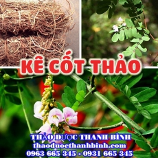 Mua bán kê cốt thảo tại Thái Nguyên giúp tăng cường chức năng gan tốt nhất