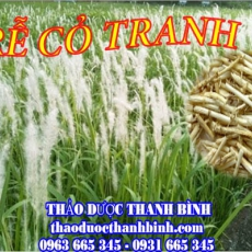 Mua bán sỉ và lẻ rễ cỏ tranh tại Đắk Lắk giá tốt nhất