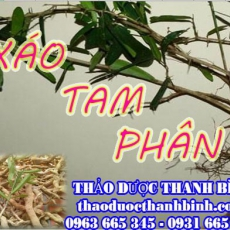 Mua bán sỉ và lẻ xáo tam phân tại Bắc Ninh giá tốt nhất