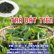 Mua bán trà Bát Tiên tại huyện Ứng Hòa giúp ăn ngon ngủ tốt hiệu quả nhất