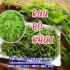 Rau Bò Khai